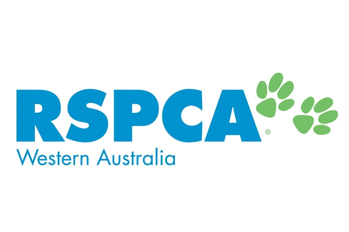 The RSPCA has welcomed the two-year custodial sentence handed to Kyel Parkes, who beheaded a puppy during a domestic dispute.