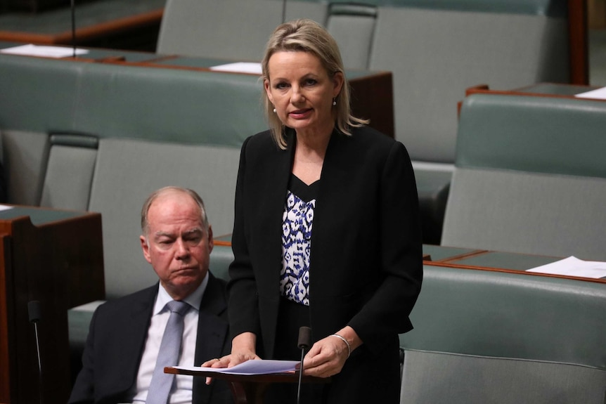 Sussan Ley stands in the House of Representatives with her speech on a desk lectern as she addresses the Parliament