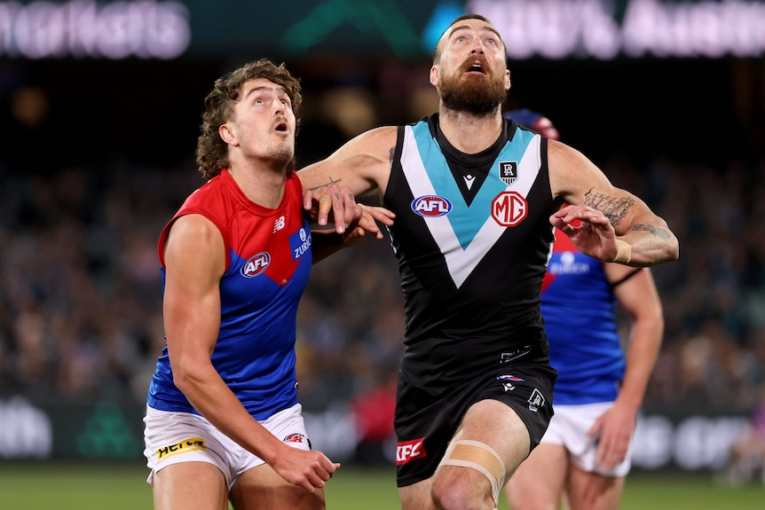 A Melbourne AFL player leans against a Port Adelaide opponent as they look to the sky for the ball.
