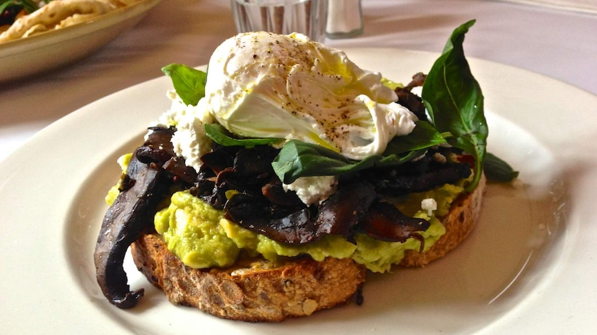 A delicious plate with sourdough toast covered in smashed avo, green leaves and a poached egg