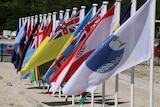 Flags from Pacific Islands Forum member nations are flying in a neat row on low white flagpoles