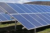 Massive solar panels in a field