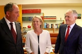 Barnaby Joyce, Fiona Nash are congratulated by Malcolm Turnbull.