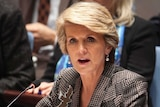 Julie Bishop speaks at a Security Council meeting on small arms.