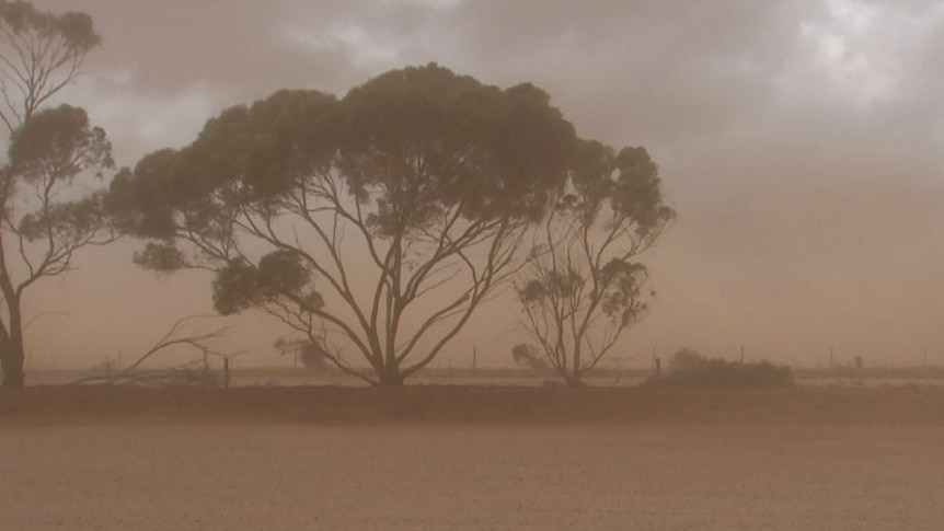 Strong winds hit fire-affected areas of South Australia.