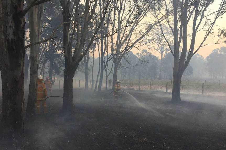 Firefighters hose a rural property