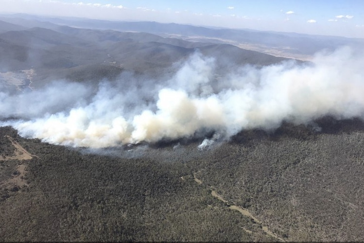 Potters Hill bushfire