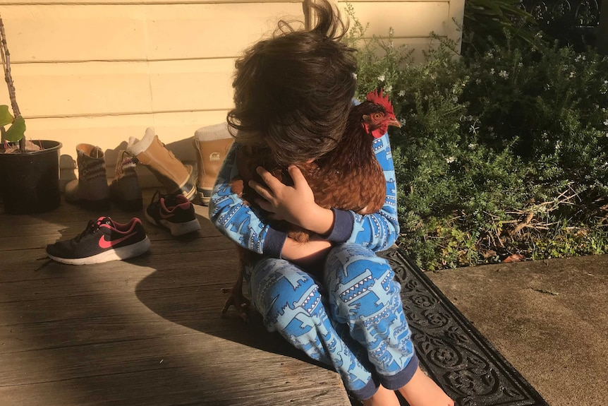 A young boy wearing pyjamas hugs a chicken, for a story about best first pets for families.