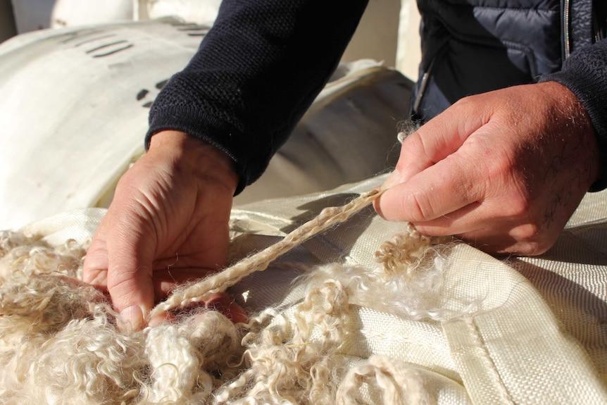 Italian buyers pay top dollar for fine Australian grown mohair.