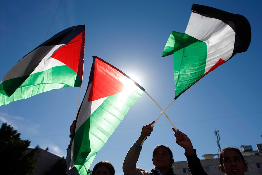 People wave Palestinian flags in support of resolution.