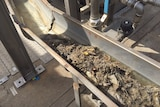 Wet wipes and other solid matter are washed down a waste channel.