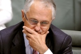 Mr Turnbull says he won't support the ETS unless there are major changes.