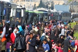 People gather outside a long line of buses