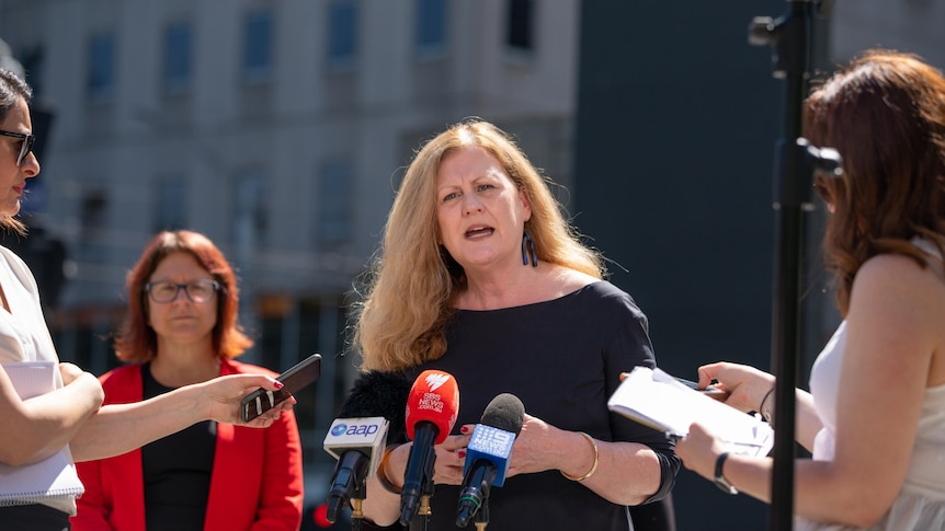 Helen Matthews speaks at a press conference, journalists hold microphones