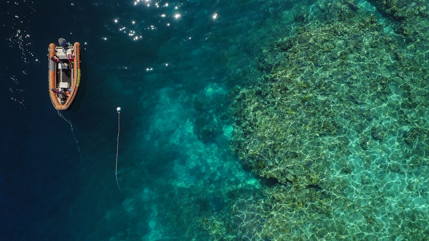 An aerial shot of an inflatable boat over a coral reef.