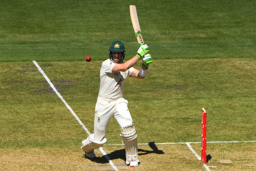 Australia captain Tim Paine completes a pull shot in the second cricket Test against India.