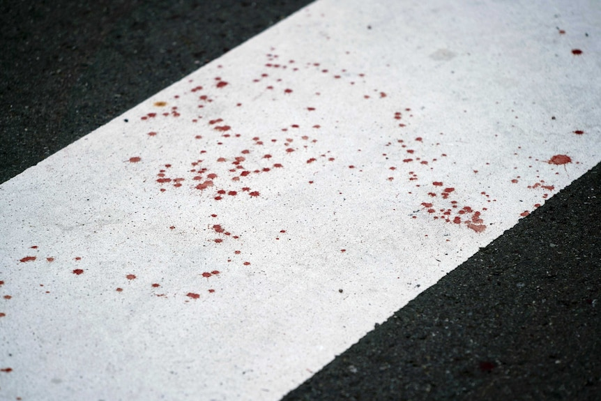 Blood spatter on the road