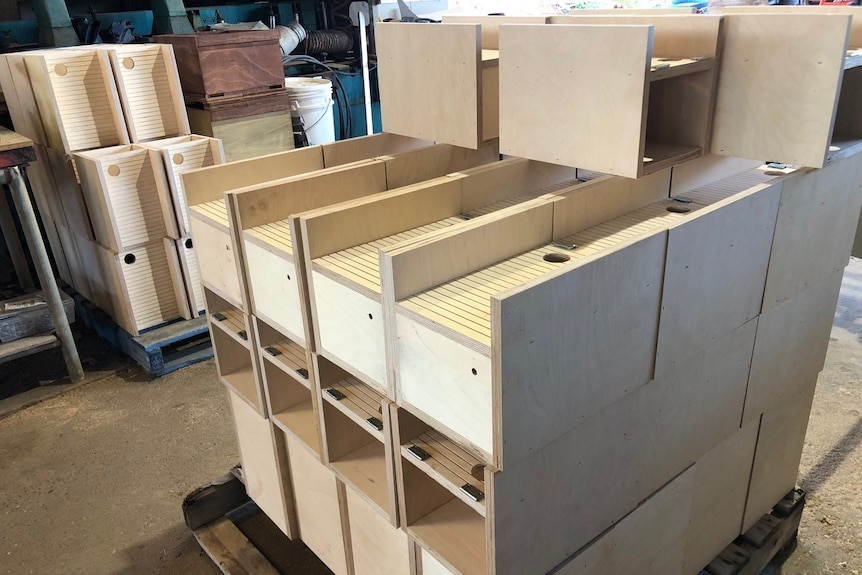 Stacks of partly made up Wildbnb boxes in the workshop where they are made.