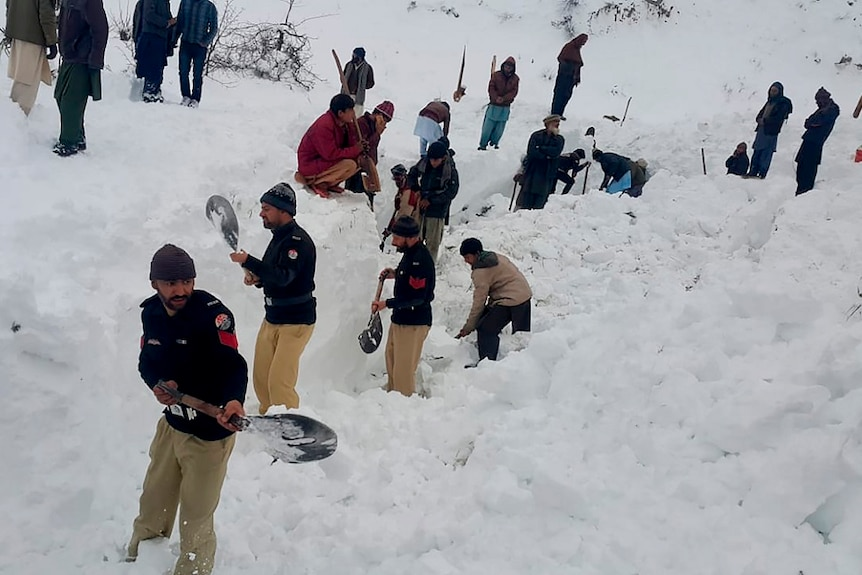 People with shovels dig in snow to find victims of avalanche.