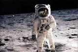 US astronaut Edwin E 'Buzz' Aldrin Jr, lunar module pilot, walks on the surface of the moon