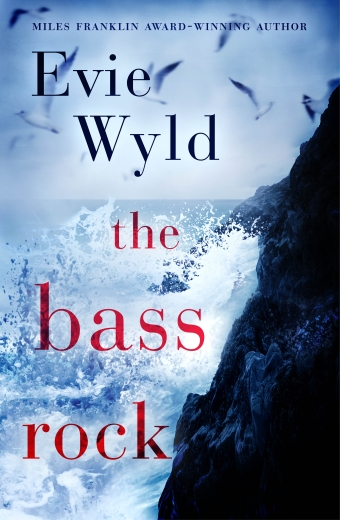 Book cover of The Bass Rock by Evie Wyld, waves crashing on a dark rock, seagulls flying