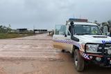 Police car near pineapple farm