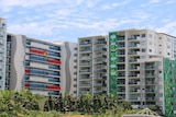Row of apartment buildings with treetops in foreground along a street in Brisbane.
