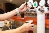 Close-up of a hand pouring a beer from a bar tap.