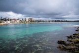 A landscape photo of snorkellers in Shelly Beach.