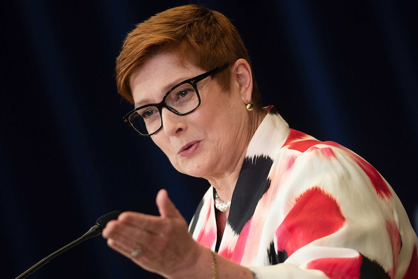 Foreign Minister Marise Payne speaks at a news conference