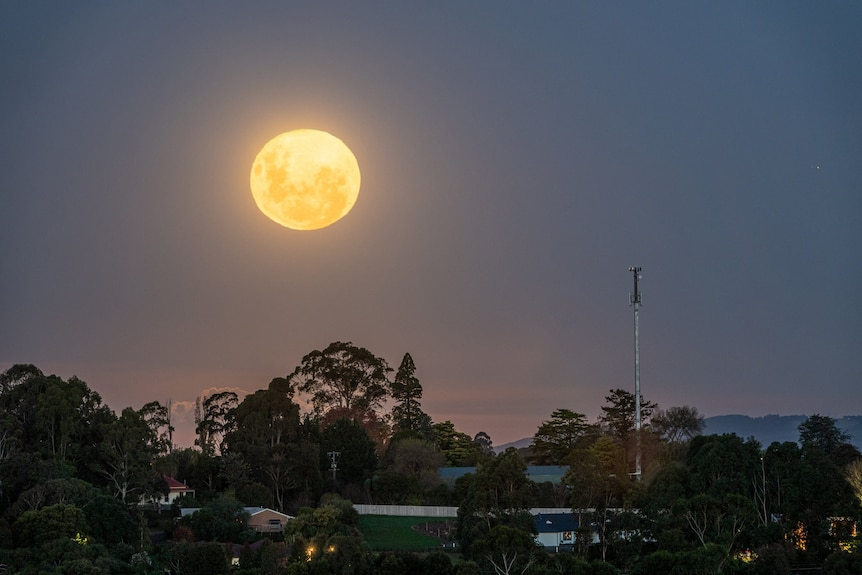 A bright full moon over the suburbs against a blue night sky.