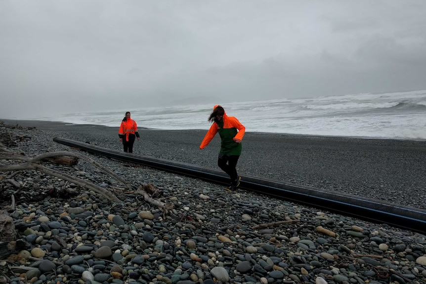 A 100 metre long pipe owned by Tasmania's Huon Aquaculture, found washed up on New Zealand beach in 2016.