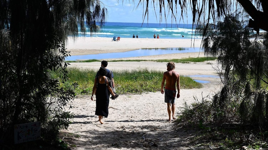 Three people walk onto beach with tress around them. Surf and people in distance.