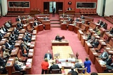 Senate votes on gay marriage legislation