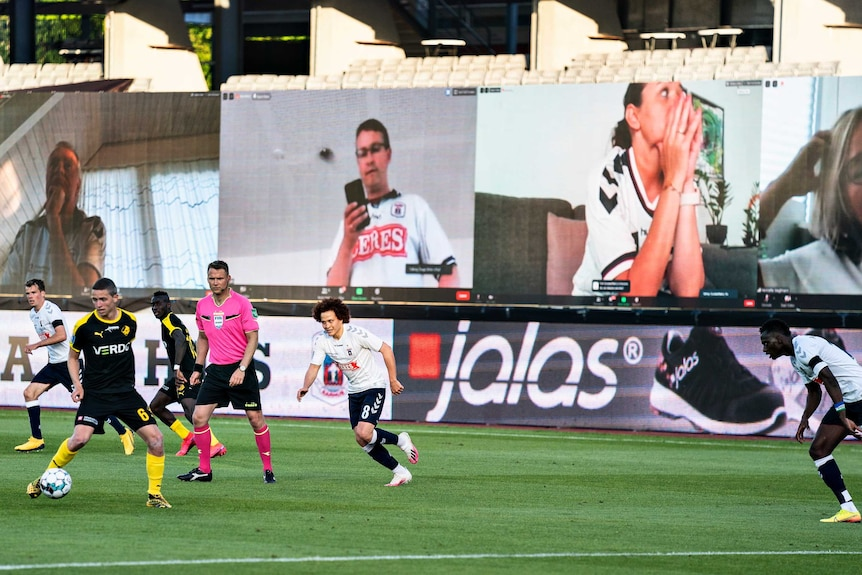 A group of TV screens at a ground show fans remote-watching a Danish football game.