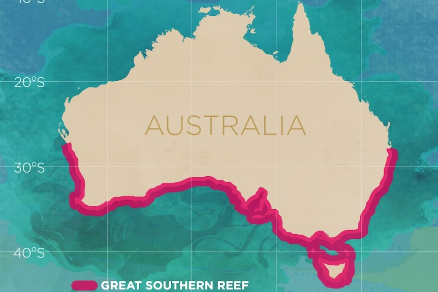 A map outlining the area of southern Australia's coastline considered the Great Southern Reef.