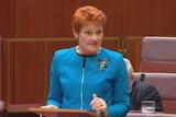Pauline Hanson makes her maiden speech to the Senate.