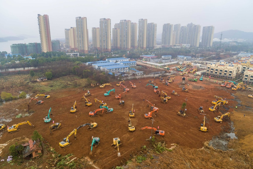 multiple cranes work dig dirt on a large vacant lot with trees and buildings behind