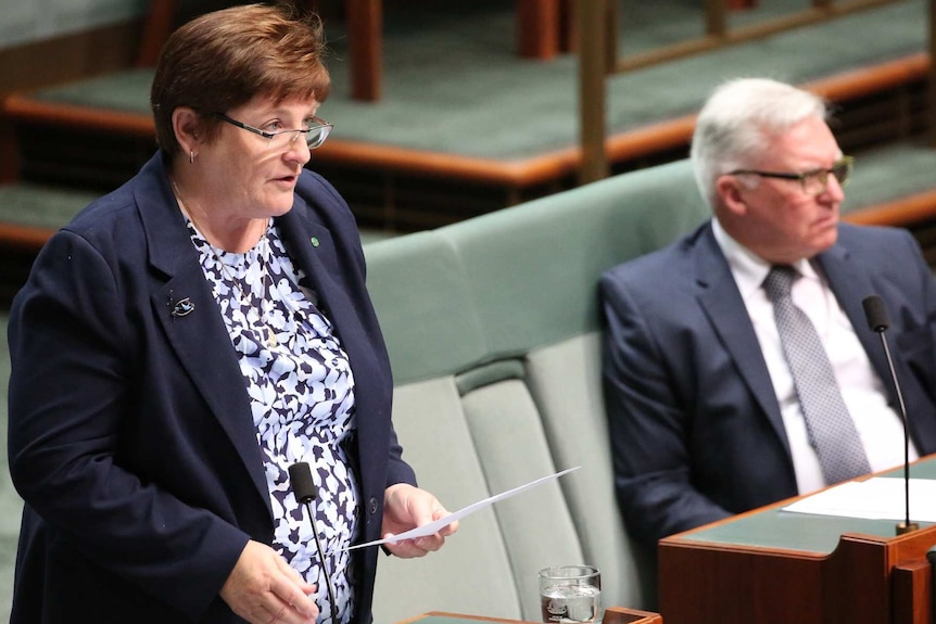 Anne Stanley wearing glasses and a blazer stands at a microphone in federal parliament