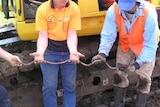 Two people hold a giant Gippsland earthworm.