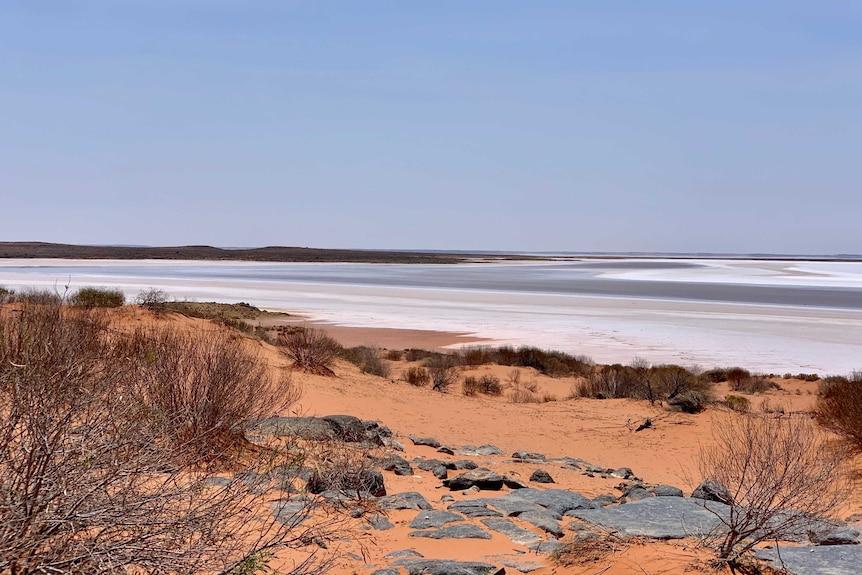 The shoreline of Lake Torrens, an salt lake in outback South Australia.