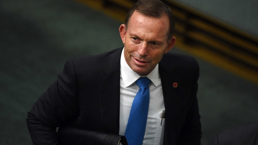 "Tony Abbott says there is a risk the Government will ""drift"" towards defeat."