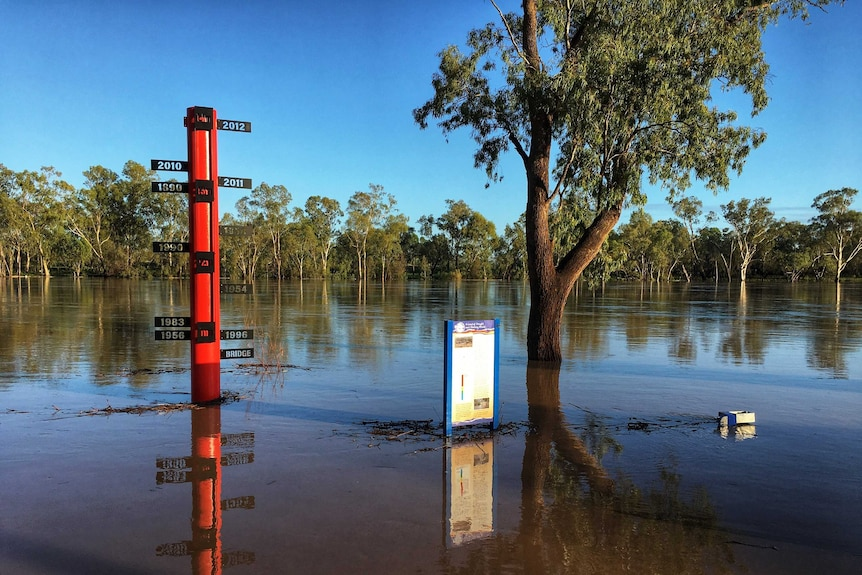Flood waters surround the flood height marker at St George in southern Queensland