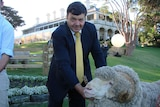Wool industry leader apologises