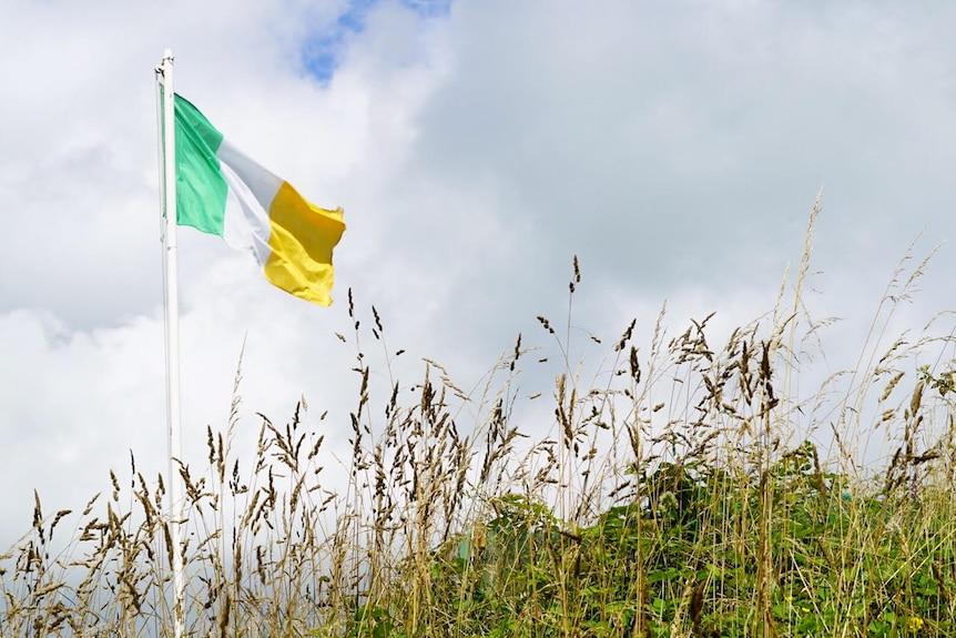 The Irish flag flies over a field.
