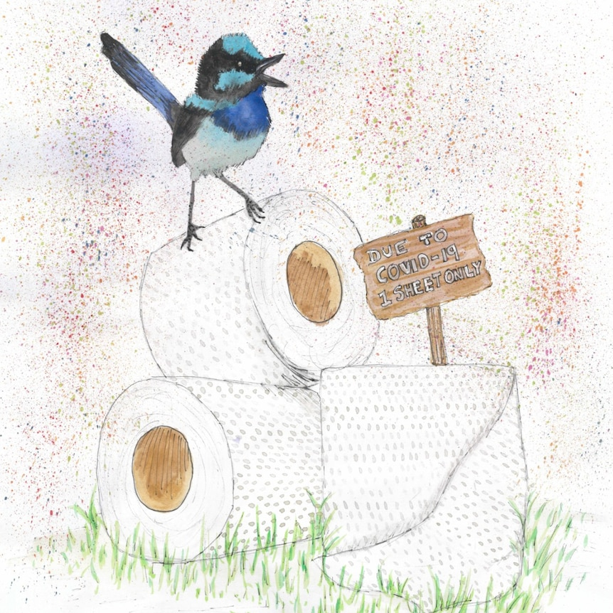 A drawing of a blue bird standing on a toilet roll