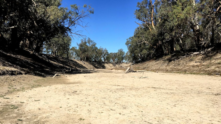 Bed of the Darling River