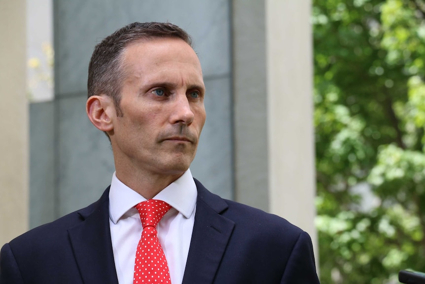 Labor MP Andrew Leigh speaks to the media on December 17, 2015.