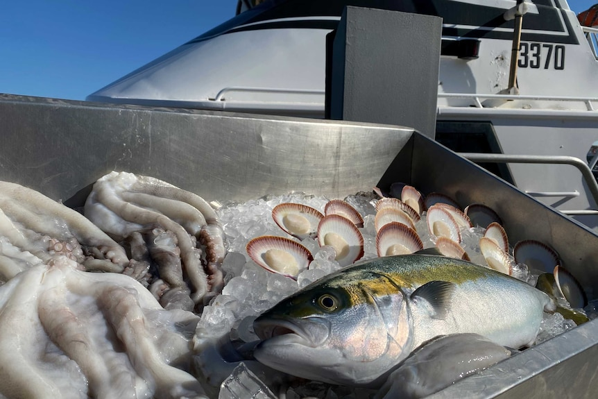 Geraldton's diverse seafood produce recognised
