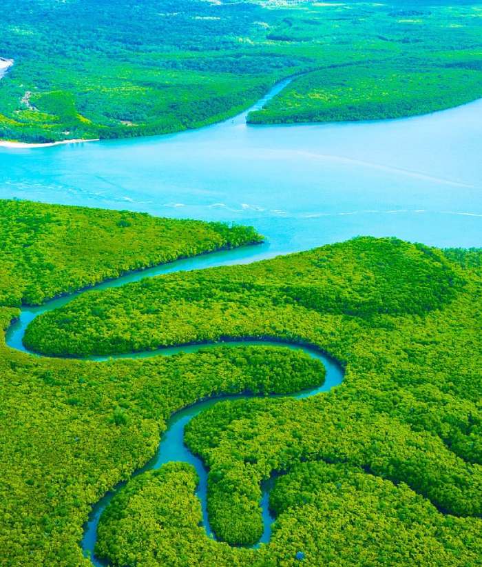 A river winding through rainforest, from above.
